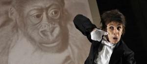 kafkas monkey
